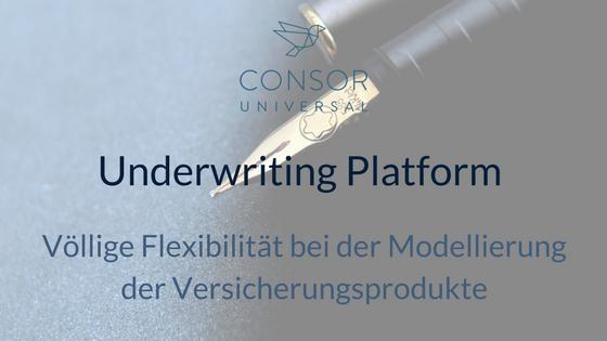 Underwriting Platform